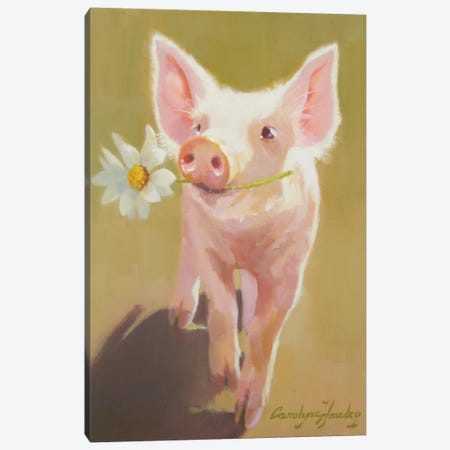 Life As A Pig IV Canvas Print #HAW15} by Carolyne Hawley Canvas Wall Art
