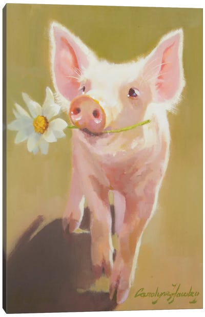 Life As A Pig IV Canvas Art Print