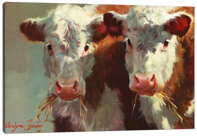 Cow Belles Canvas Art Print