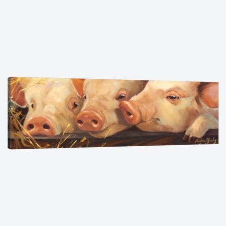 Pig Heaven Canvas Print #HAW2} by Carolyne Hawley Art Print