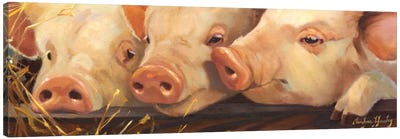 Pig Heaven Canvas Art Print