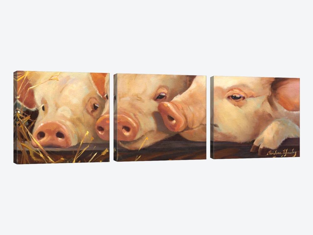 Pig Heaven by Carolyne Hawley 3-piece Canvas Wall Art