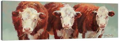 Three Of A Kind Canvas Print #HAW5