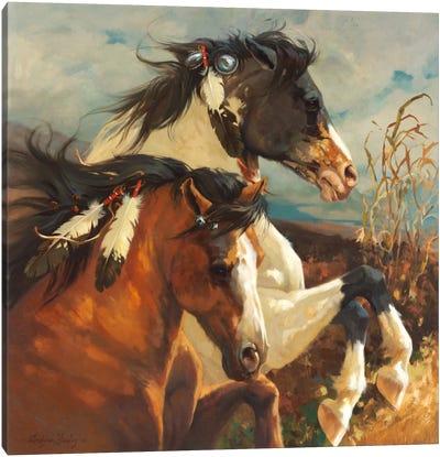 Wind Voyager Canvas Art Print