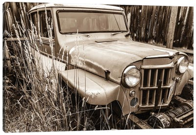Willys in Sepia Canvas Art Print