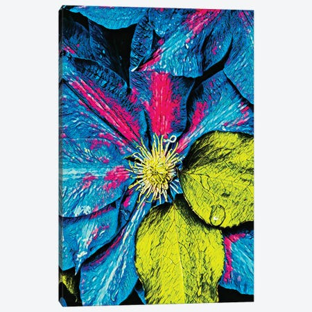 Clematis Abstract Canvas Print #HBN6} by Heidi Bannon Canvas Print