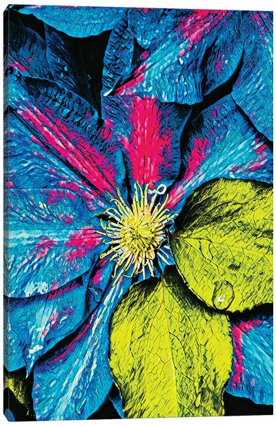 Clematis Abstract Canvas Art Print