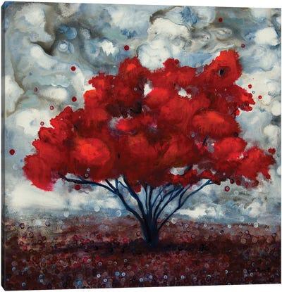 Illuminations Of Fall Canvas Art Print
