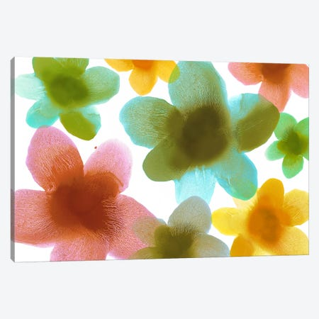 Floral Blooms III Canvas Print #HCA30} by Hannah Carlson Canvas Art