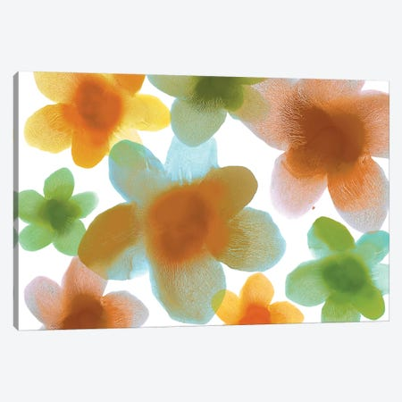 Floral Blooms IV Canvas Print #HCA31} by Hannah Carlson Canvas Art