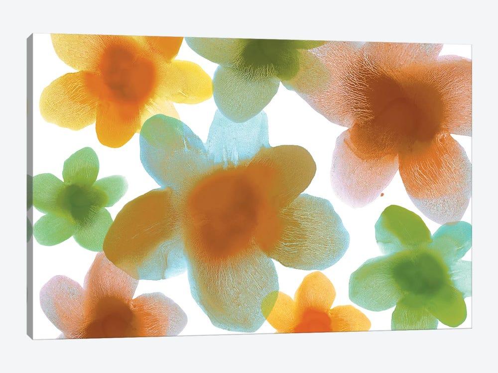 Floral Blooms IV by Hannah Carlson 1-piece Art Print