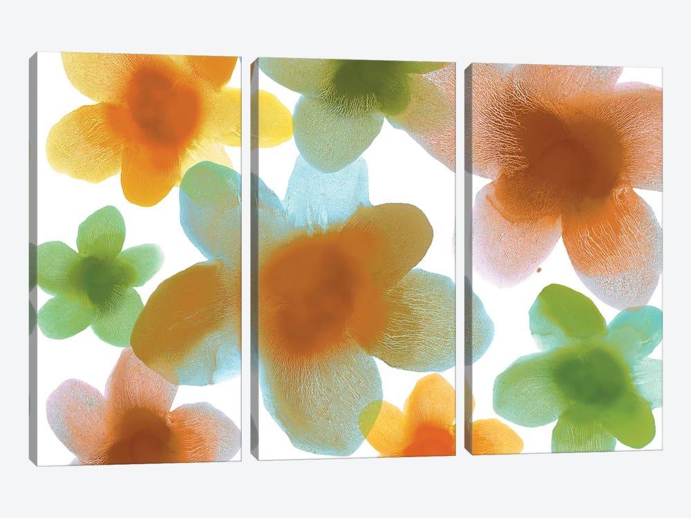 Floral Blooms IV by Hannah Carlson 3-piece Canvas Art Print