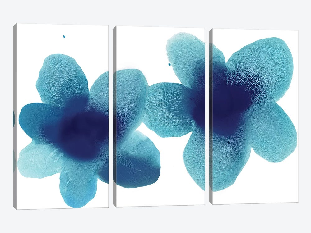 Floral Blooms Pair by Hannah Carlson 3-piece Canvas Print