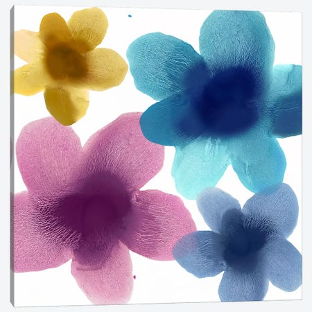 Floral Blooms VI Canvas Print #HCA35} by Hannah Carlson Art Print