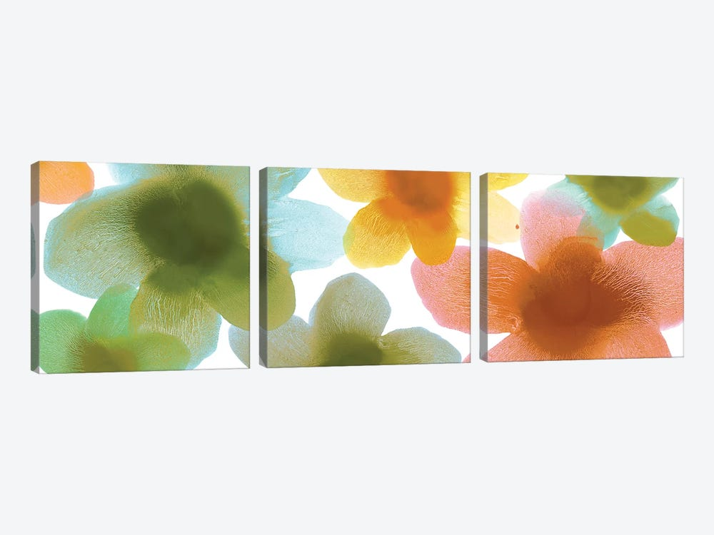 Floral Blooms VII by Hannah Carlson 3-piece Canvas Artwork
