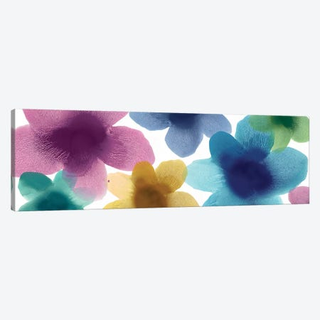 Floral Blooms VIII Canvas Print #HCA37} by Hannah Carlson Canvas Art Print