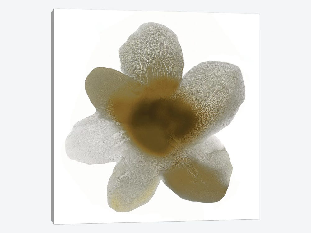 Taupe Bloom I 1-piece Canvas Art