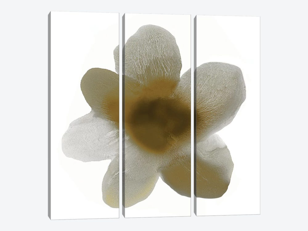 Taupe Bloom I by Hannah Carlson 3-piece Canvas Artwork