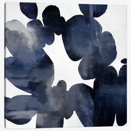 Enigmatic II Canvas Print #HCA8} by Hannah Carlson Canvas Artwork