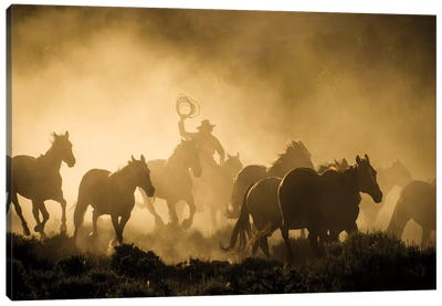 A wrangler herding horses through backlit dust cloud in golden light of sunrise Canvas Art Print