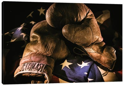 Pair of vintage boxing gloves laying on a flag carefully painted with light Canvas Art Print