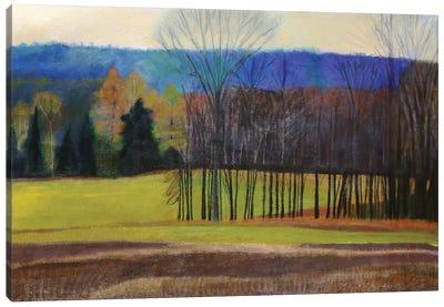 Charlevoix County Canvas Art Print