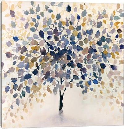 Past Autumn Canvas Art Print