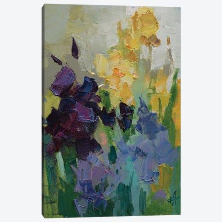 Irises Canvas Print #HDV38} by CountessArt Canvas Art