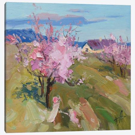 Spring Blossoming Peach Canvas Print #HDV63} by CountessArt Art Print