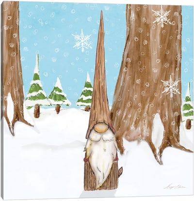 Winter Gnome III Canvas Art Print