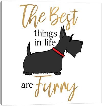 Puppy Positive IV Canvas Art Print