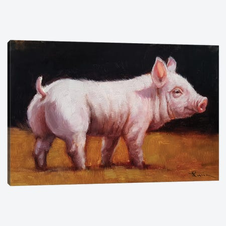 Wilbur Canvas Print #HEF102} by Lucia Heffernan Canvas Print