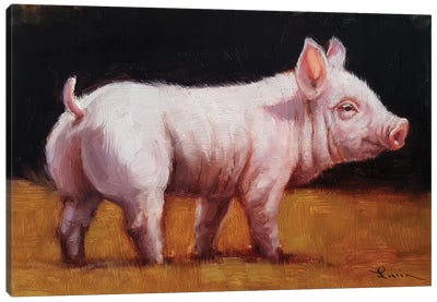 Wilbur Canvas Art Print