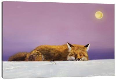 Dreamweaver Canvas Art Print