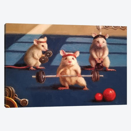Gym Rats Canvas Print #HEF179} by Lucia Heffernan Canvas Wall Art