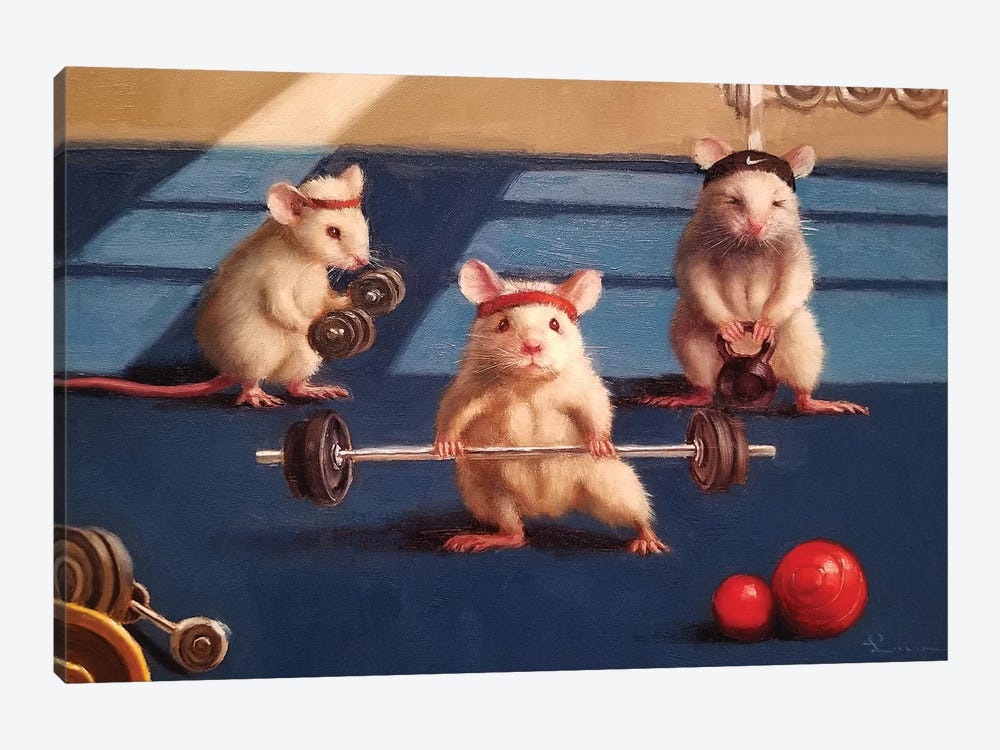 Gym Rats by Lucia Heffernan 1-piece Canvas Wall Art