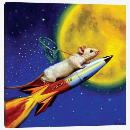 Dream Catcher Canvas Print #HEF26} by Lucia Heffernan Canvas Print