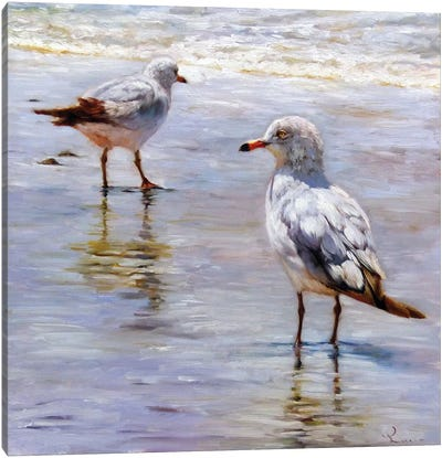 Waders Canvas Art Print