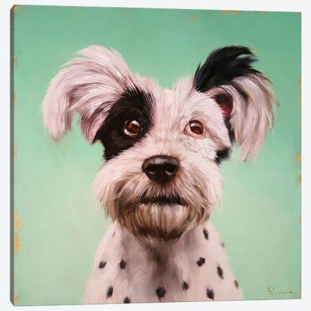 Follow Your Nose VIII Canvas Print #HEF60} by Lucia Heffernan Canvas Art