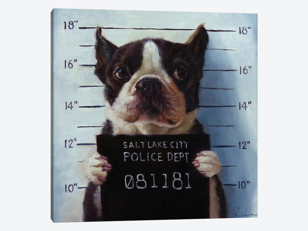 Mug Shot by Lucia Heffernan 1-piece Canvas Artwork