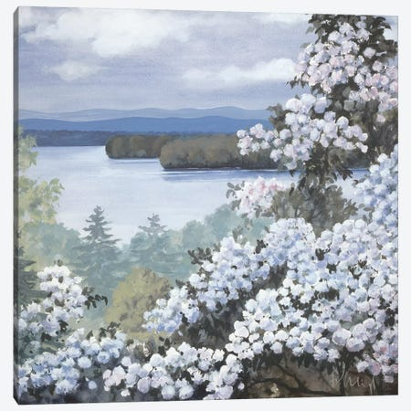 Water Base I Canvas Print #HEI15} by Franz Heigl Art Print