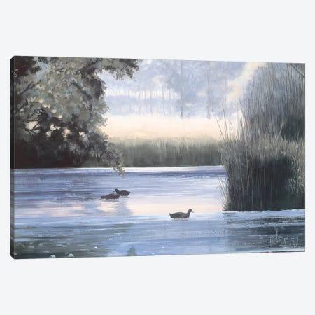 Water Base II Canvas Print #HEI16} by Franz Heigl Art Print