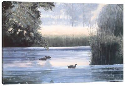 Water Base II Canvas Art Print