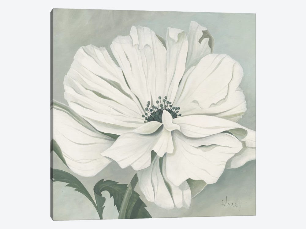 White Poppy by Franz Heigl 1-piece Canvas Wall Art