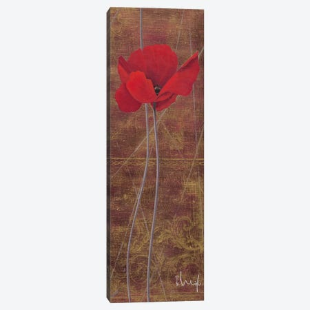 Antique Red I Canvas Print #HEI3} by Franz Heigl Canvas Wall Art