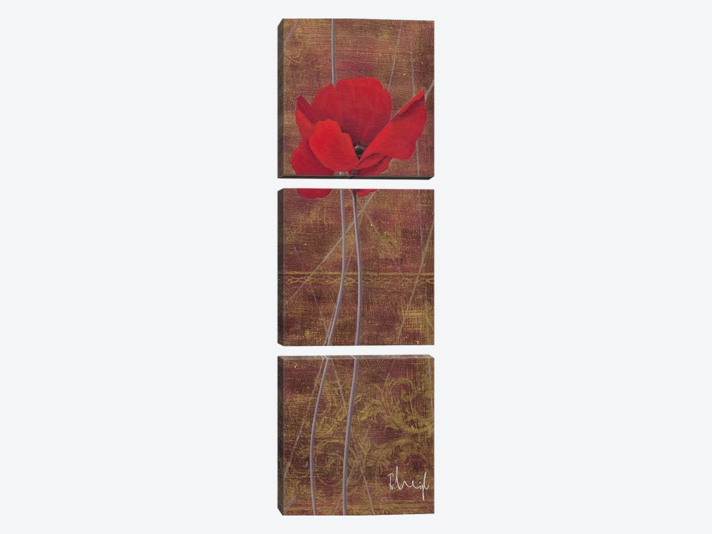 Antique Red I by Franz Heigl 3-piece Canvas Artwork