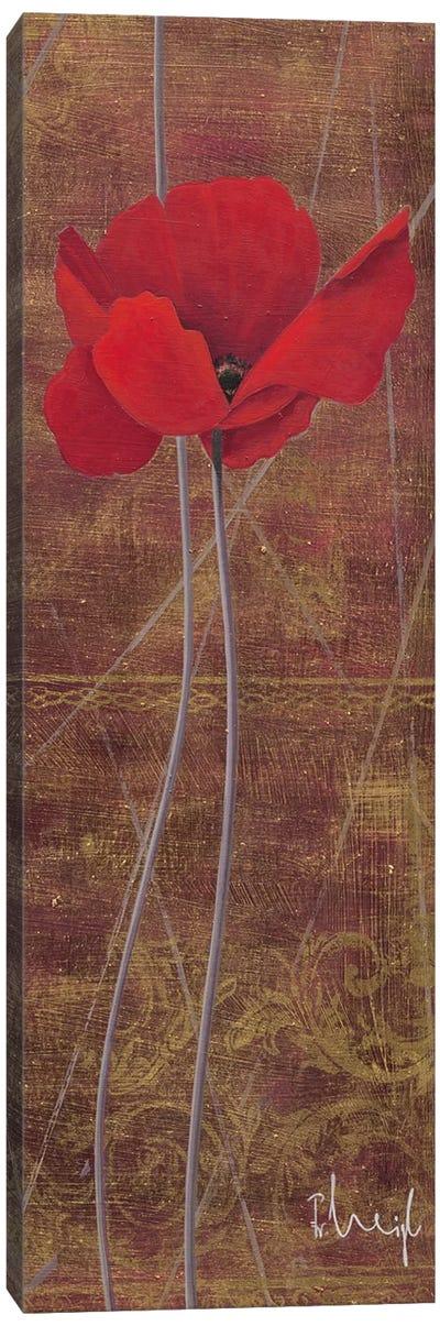 Antique Red I Canvas Art Print