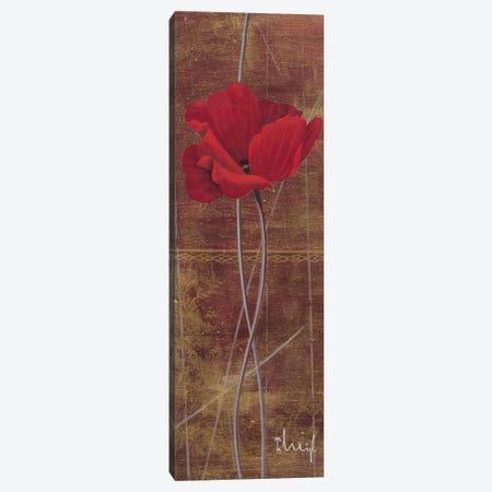Antique Red II Canvas Print #HEI4} by Franz Heigl Canvas Print