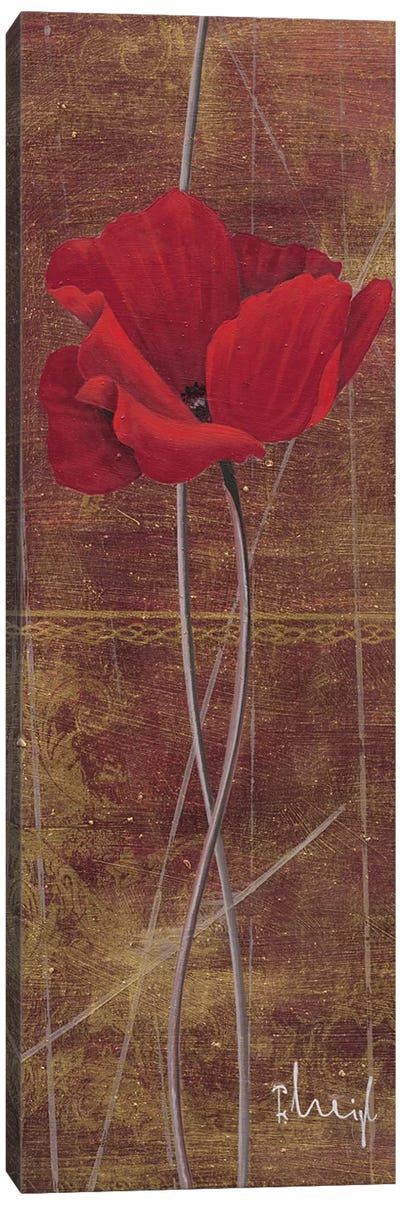 Antique Red II Canvas Art Print