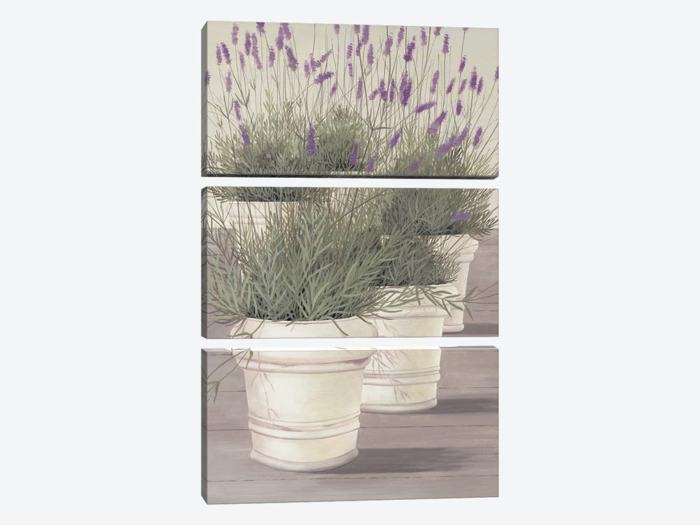 Lavender by Franz Heigl 3-piece Canvas Art Print